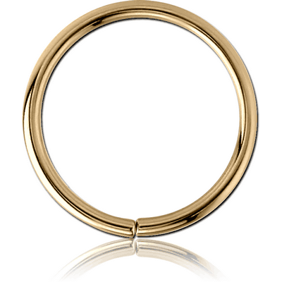 ZIRCON GOLD SURGICAL STEEL CONTINUOUS RING
