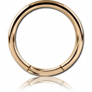 ZIRCON GOLD PVD COATED SURGICAL STEEL SMOOTH SEGMENT RING